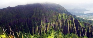 Beautiful Hawai Environment